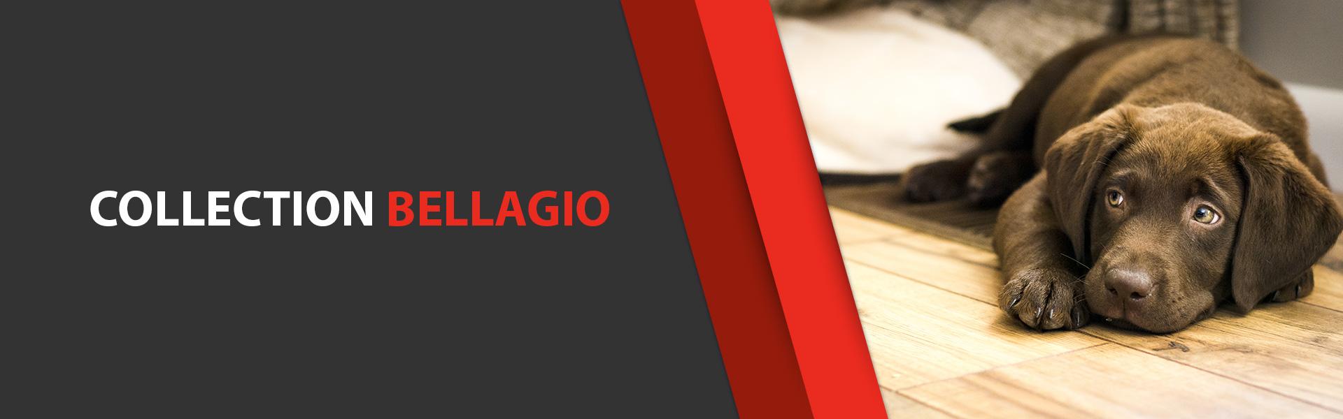 Plancher Sélect Plancher flottant Collection Bellagio